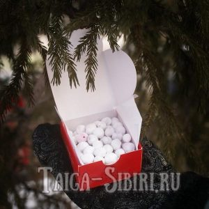 Байкальская клюква в сахарной пудре