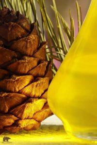 Масло кедровое - золото тайги