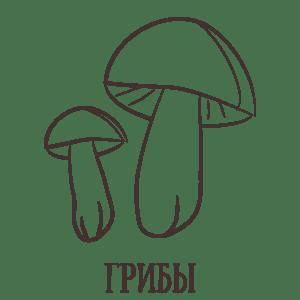 Griby 300x300 - Сибирские подарки в Таёжной Лавке